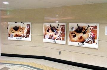 Echikaちゃんポスター
