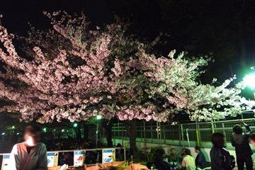 上野公園その2