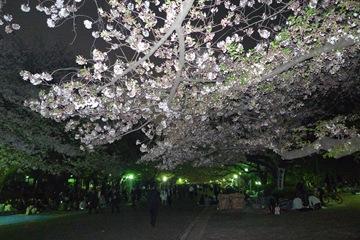 上野公園その1