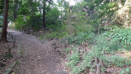 井の頭恩賜公園2