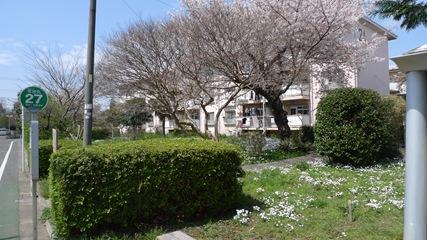 阿佐ヶ谷住宅2