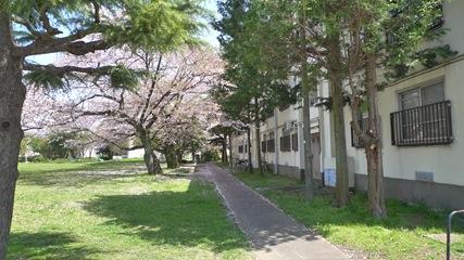 阿佐ヶ谷住宅3