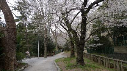 外濠公園2